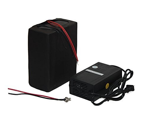 48V-10AH LIFEPO4 BATTERY PACK POWER FOR EBIKE NEW CELL WITH A CHARGER (Li Electric Bicycle)