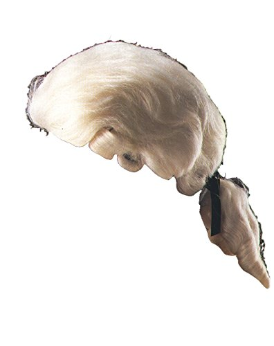 Colonial Times In Wigs (Loftus International Adult Star Power Colonial Times Court Costume Wig, White, One)