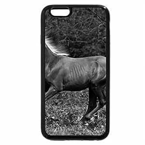 iPhone 6S Plus Case, iPhone 6 Plus Case (Black & White) - Amazing Horse