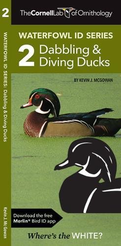 Cornell Lab of Ornithology Waterfowl ID: #2 Dabbling Ducks & Diving Ducks (Waterfowl ID Series)