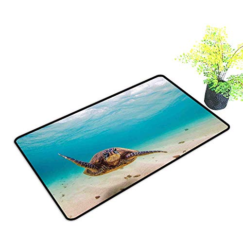(Zmstroy Non-Slip Door mat Hawaiian Underwater Scuba Diving Sea Turtle Nature Animal Swimming Wildlife Theme W24 xL35 Easy to Clean Carpet Blue Beige Brown)