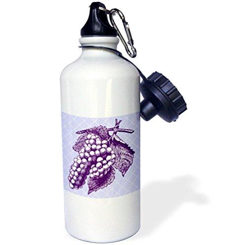 Russ Billington Designs - Purple Bunch of Grapes Vintage Engraving over diagonal Stripes - 21 oz Sports Water Bottle (wb_220823_1)