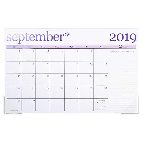 Erin Condren 2019-2020 Metallic Monthly Deskpad 11