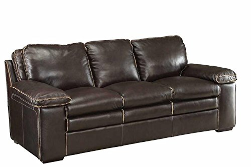 Coaster Home Furnishings 505845 Two-Tone Regalvale Collection Sofa, Brown