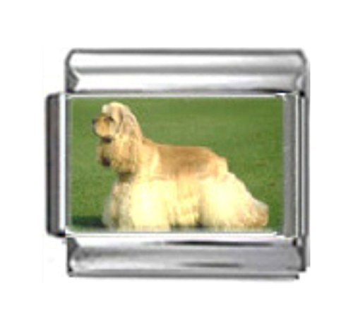 Stylysh Charms Cocker Spaniel Dog Photo Italian 9mm Link DG158 ()