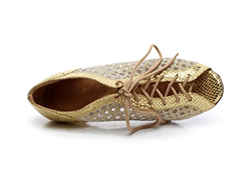 Dance up Shoes Women's QJ5006 Gold Salsa Minishion Lace Tango Mesh Latin q8txzSw
