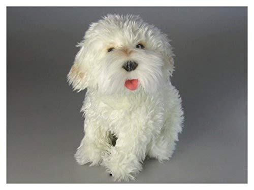 Carl Dick French Poodle White Sitting, 10.5 inches, 25cm, Plush Toy, Soft Toy, Stuffed Animal 3370