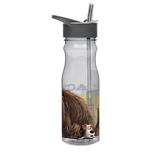 Zak Designs SLPA-P280 Secret Life of Pets 25 oz. Water Bottle with Straw, Max & Duke, Multicolor
