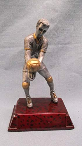 (Male Volleyball Trophy Resin Award)