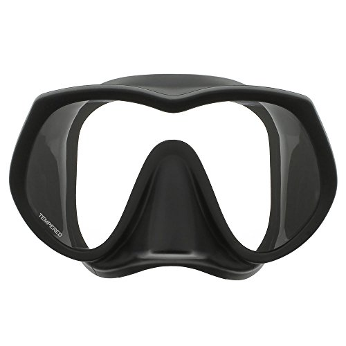 DGX Ultra View Frameless Mask