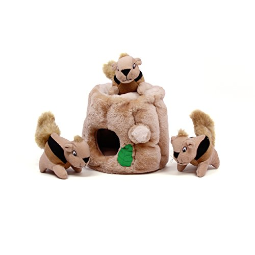 Keep your dog entertained with Outward Hound Hide-A-Squirrel Dog Toy Plush Dog Squeaky Toy Puzzle, 4 piece, Large