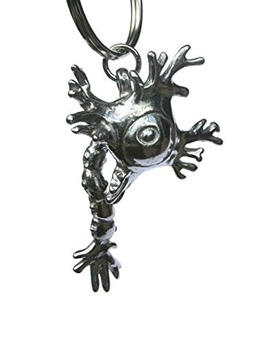 Amazon.com: Neurona (nervios/Cerebro la celda) clave Cadena ...
