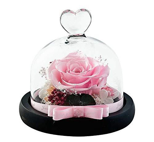 Dakotan Handmade Eternal Rose- Preserved Flower Rose,Forever Flower with Heart Shape Glass -Gift for Valentine's Day Mother's Day Christmas Anniversary Birthday Thanksgiving Girls(Pink)