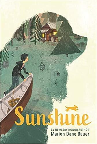 Sunshine: Bauer, Marion Dane: 9781536214116: Amazon.com: Books