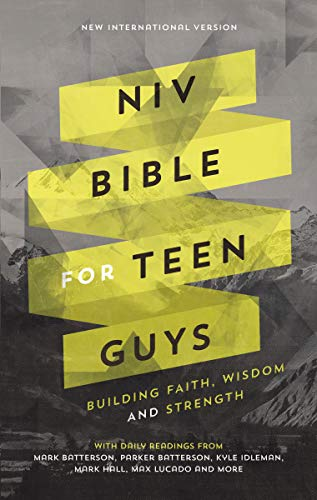 NIV, Bible for Teen Guys, Hardcover: Building Faith, Wisdom and Strength (Best Bible For Teens)