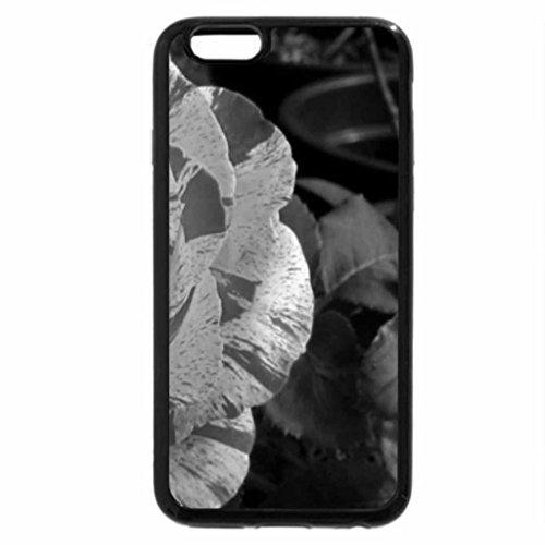 iPhone 6S Plus Case, iPhone 6 Plus Case (Black & White) - belle rose