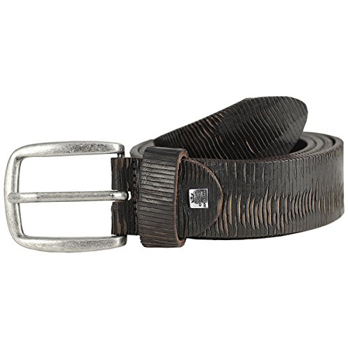 Cintur Cintur Cintur Cintur Cintur Cintur Cintur Cintur Cintur Cintur Cintur vzdSzw