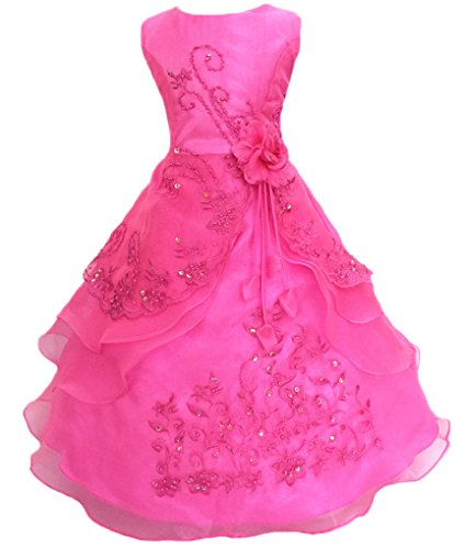 Shiny Toddler Little Girls Embroidered Beaded Flower Girl Birthday Party Dress with Petticoat 4t-5t,Fuchsia]()