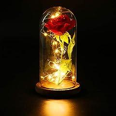 FunPa Rose in glas, eeuwige roos in glas mooi en het best LED kunstroos bloemen geconserveerde roos LED lichtsnoer...