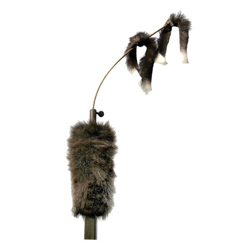 Find Cheap Mojo Outdoors Critter Decoy