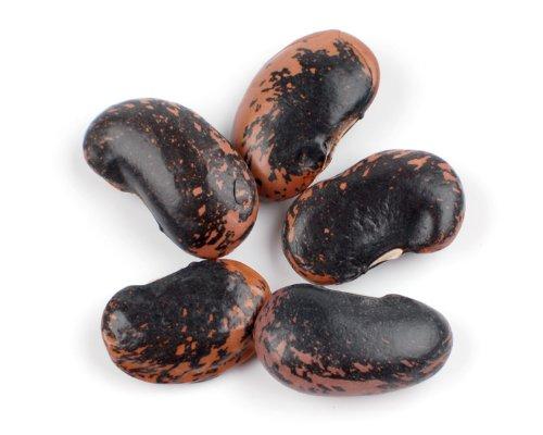 Runner Beans, Scarlet - 25 Lb Bag by Woodland Ingredients