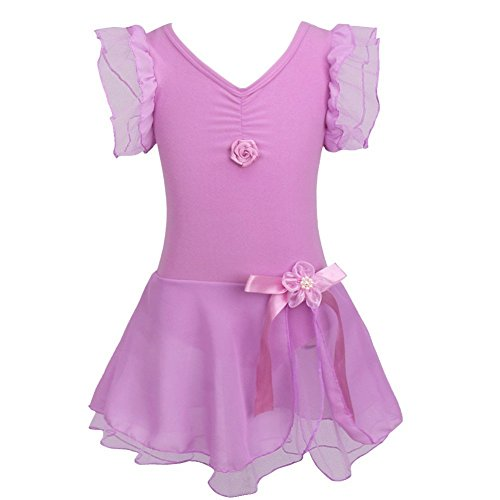 [FEESHOW Girls' Gymnastic Ballet Leotard Dance Dress Tutu Skirt Princess Costume Purple 5-6] (Junior Dance Costumes)