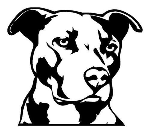 pitbull window decal - 5