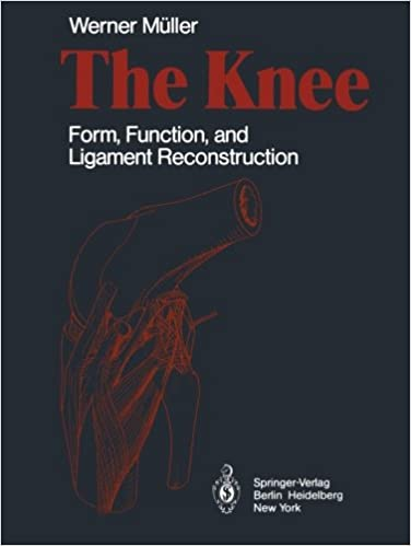 Book The Knee: Form, Function, and Ligament Reconstruction