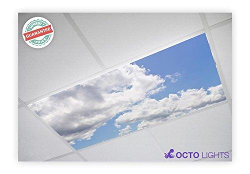 Cloud 013 2x4 Flexible Fluorescent Light Cover