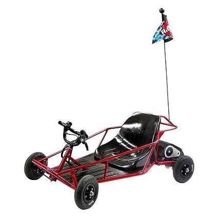 Amazon.com : The Razor Electric Mini Dune Buggy Makes a Great Kids ...