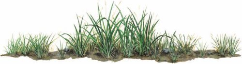 Walls of the Wild Grass Decal Sticker Wall Mural, 42 inches x 12 ()
