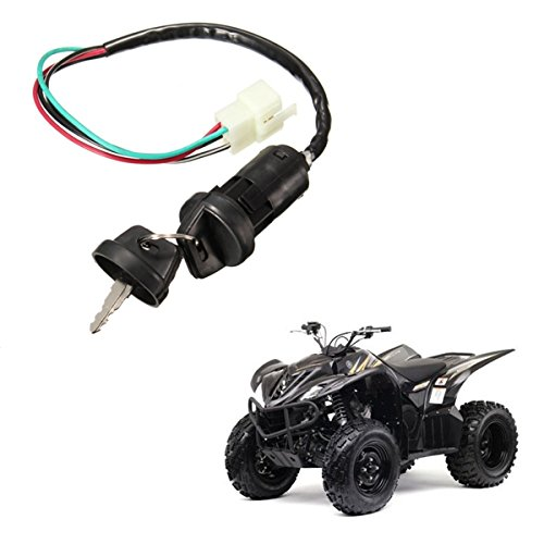 Viviance Universal Ignition Barrel Switch 4 Wires 2 Key For Motorcycle Pit Dirt Bike Quad ATV: