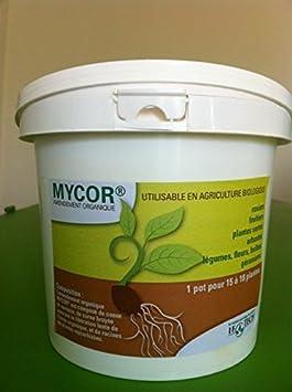MYCOR en pot de 2.3 L