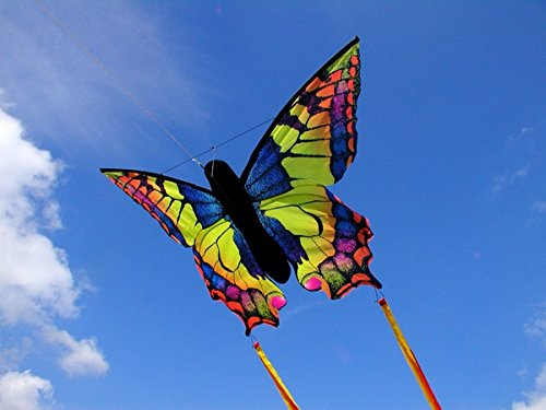 HQ Kites Swallowtail R Butterfly Kite   20 Inch Single - Line Kite with Tail - Active Outdoor Fun for Ages 5 and Up by HQ Kites and Designs (Image #3)