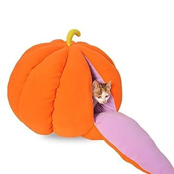Mascota linda fruta nido de calabaza nido de gato nido de perro nido de invierno medio cerrado gato casa de perro tienda de gato casa M: Amazon.es: ...