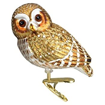 old world christmas pygmy owl glass blown ornament - Owl Christmas