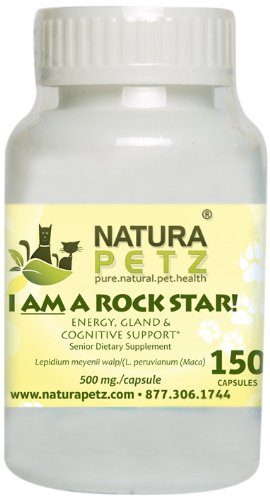 I AM A ROCK STAR Memory, Gland Hypothalmic, Pituitary and Adrenal and Energy Support for Senior Dogs and Cats, 150 Capsules, 500 mg per Capsule