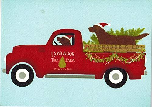 Chocolate Labrador Christmas Cards - Labrador Christmas Cards