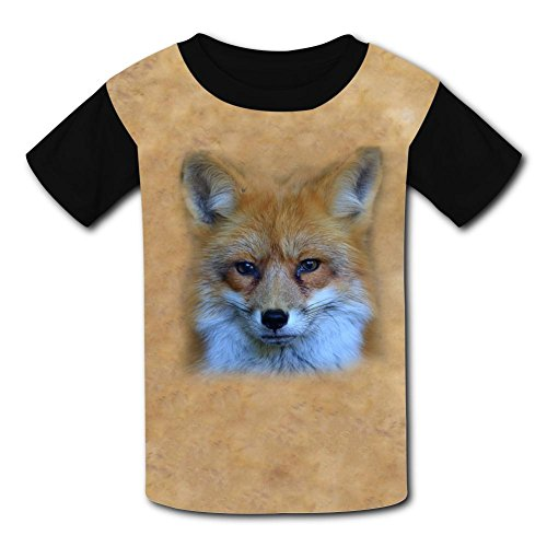Round Neck 100% Polyester Fiber Cute Short Sleeve Top Tshirt For Unisex Kid,Print Fox Is Looking Xl -