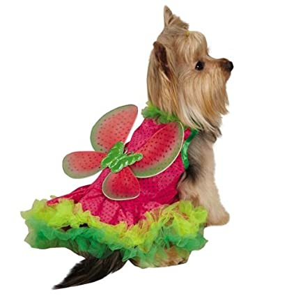 Zack & Zoey Watermelon Fairy Costume, Medium