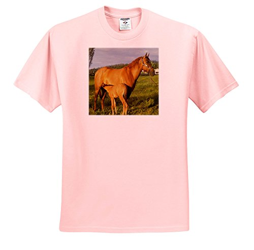 3dRose TDSwhite - Horse Equine Photos - Nursing Foal Field - T-Shirts - Toddler Light-Pink-T-Shirt (3T) (ts_285527_48)