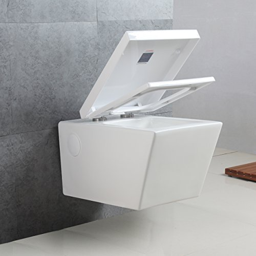 Basong White Wall-Hung Dual-Flush Toilet Bowl In-Wall Tank System Save Space and Water(22.05x14.17x13.78 In.)