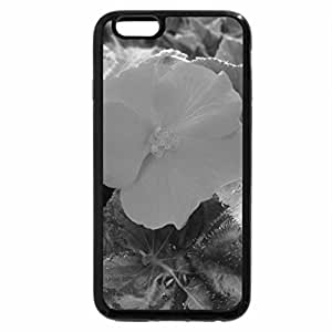 iPhone 6S Plus Case, iPhone 6 Plus Case (Black & White) - Greenhouse photography day 49
