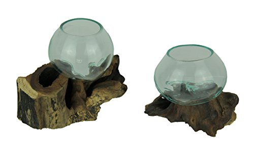 Zeckos Molten Glass On Teak Driftwood Decorative Bowl/Vase/Terrarium Planter Set of 2
