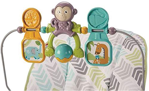 Fisher-Price Bouncer, Green/Blue/Grey