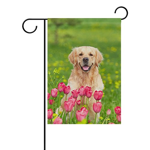 (ColourLife Golden Retriever Sitting Tulip Flower Fields Seasonal Holiday Garden Yard House Flag Banner 28 x 40 inches Decorative Flag for Home Indoor Outdoor Decor)