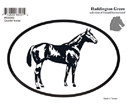 Amazon Com Quarter Horse Decal Sports Outdoors