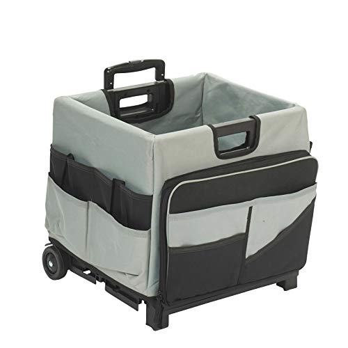 30c804bce70f ECR4Kids MemoryStor Universal Rolling Cart and Organizer Bag Set