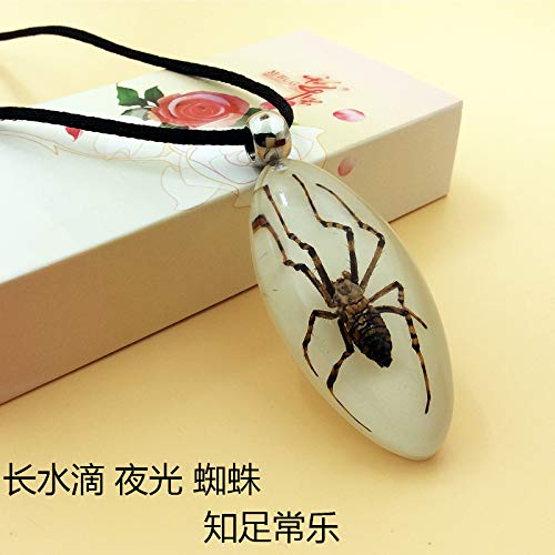 insect specimens jewelry creative couple gifts for children men women students counters scorpion necklace pendant chain amber (long drop pendant luminous spider ()