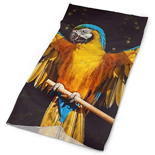 Yellow Parrots Wings Unisex Fashion Quick-Drying Microfiber Headdress Outdoor Magic Scarf Neck Neck Scarf Hooded Scarf Super Soft Handle